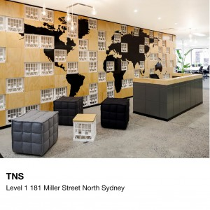 The Bold Collective   TNS